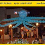 θέμα θάλασσα μπαλόνια