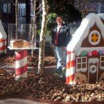 christmas decoration (2)